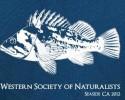 WSN2012_Rockfish